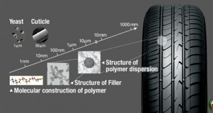 Molecular-level observation of fillers and polymers comprising tire compounds.